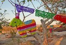 Piña Piñata