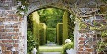 Garden - White Sissinghurst