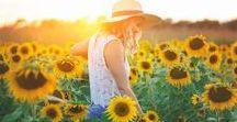 Słoneczniki // Sunflowers / Photo session in sunflowers ♥