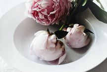 Peonies...& other stories