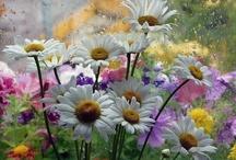 I Like Many Flowers