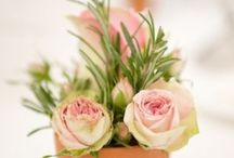 Pétales... / Ou comment sublimer les fleurs...