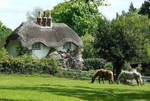 English Cottages / Pretty English cottages and décor. / by Betty D