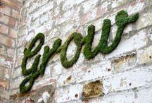 Garden / Alt av inspirasjon til hagen