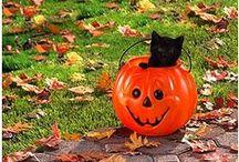 i.c.  cats  [^._.^] Halloween & Witches / Whêñ ßlå¢k ¢å†§ þrOwl åñÐ þµmþkïñ§ glêåm, Må¥ lµ¢k ßê ¥ðµr§ Oñ HållOwêêñ. / by a.l.s (1*)
