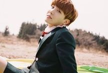 Hoseok / 방탄소년단 (BTS) • Bangtan Boys • 제이홉 • 호석 • 정호석 • J-Hope • Hoseok • Jung Hoseok • Rapper • Dancer • Hobie