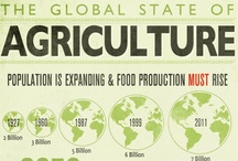 Infographics: Agriculture