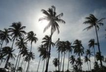 Praias,no Brasil / Lindas praias...