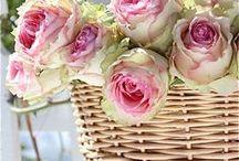 baskets & flowers