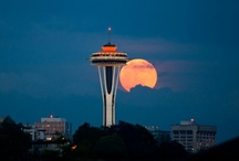 Seattle Places / by Dawn Nutting