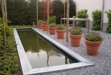 vijvers / Je kunt vijvers maken in heel veel verschillende stijlen: groot en strak, organisch, zwemvijvers, heel klein met een waterloop, noem maar op. Water maakt de tuin altijd levendig. www.houdijkstijltuinen.nl
