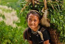 Vietnam / by Patty Bevers
