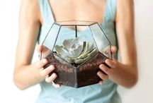 Green fingers / for gardeners and plant lovers - items for the home, fashion, gift ideas.