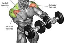 Weighted Workouts
