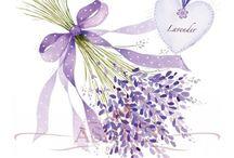 Lavender Romance Cottage