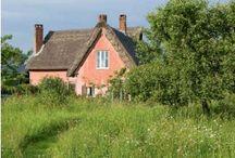 Peach  Rose Cottage