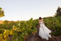 Vineyards weddings in the country - wine weddings for wine lovers / Italy has some absolutely spectacular destinations which are a little off the beaten tourist track, but for this reason are excellent value for money. You won't be compromising on scenery or quality of food, but you will discover a completely new face of Italy.  I would recommend for the discerning bride a ceremony in 'the Langhe', Piedmont, because this area of Italy is a treasure to discover and learn about! Come and discover more at www.extraordinaryweddings.com - A wedding in Italy