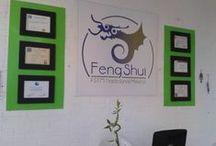 Tienda Feng Shui / Cursos - Asesorias en Feng Shui- Sanación- Masajes - Tienda-Productos para SPA - Orgones - Joyeria . Renta de Salón para eventos. Bazar- Lectura del Rostro - Productos Orgánicos