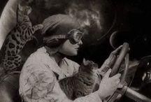 The Marvellous Moggie / A celebration of cats