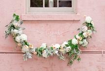 Flowers & Succulents / by Hannah Skvarla