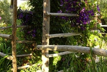 Plant Supports / #garden #gardening #trellis #arbor #pergola #plantsupports #verticalgardening