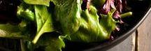 SalaDs / Delicious healthy salad recipes