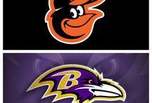 Baltimore Birds / The Ravens & The Orioles / by Fran Marano Ridgeway