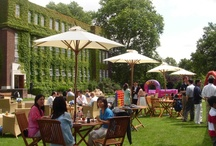 Outdoor Event's, Regent's Conferences & Events / Situated in Regent's Park London, Our York Lawns are perfect for team building events. We can cater for all sorts of different activities from it's a knock out style activities to cup-cake making workshops.   We work with  a range of leading teambuilding companies to create packages that enhance team development, improve group relationships and increase performance.  To arrange a venue visit, or discuss a possible upcoming event, call us on 020 7487 7540 or email conferences@regents.ac.uk.