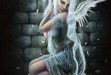 fairies / i believe in fairies