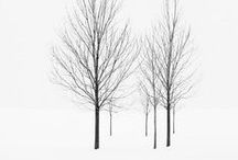 winter†ime