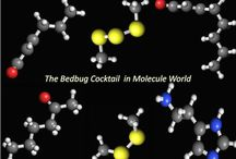 Chemistry in Molecule World / Images of chemicals from the Molecule World iPad app by Digital World Biology.