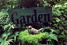 In the garden / by Sharon E Ciri