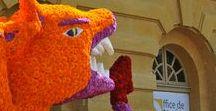 Metz en fêtes / Retrouvez les grands moments de fêtes de la Ville de Metz