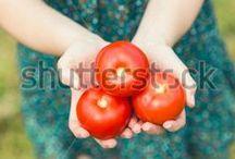 Garden & Backyards / #green #farm  #cultivate #grow