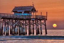 """Florida / Florida je 27. stát USA ležící na stejnojmenném poloostrově na jihu Spojených států. Jméno """"Florida"""" je španělské přídavné jméno znamenající """"květinový"""". Symbolem tohoto státu je pelikán."""
