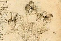 Leonardo da Vinci / (15. dubna 1452 Anchiano u Vinci – 2. května 1519 Cloux u Amboise) byl všestranná renesanční osobnost. Byl významný malíř, sochař, architekt, přírodovědec, hudebník, spisovatel, vynálezce a konstruktér.