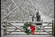 rustic holidays / Rustic holiday ideas and decor