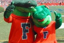 Albert & Alberta <3 / Albert and Alberta represent the love, cheer and pride maintained by the University of Florida Athletics fan base.