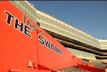 Welcome to The Swamp