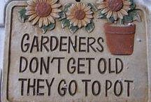 Garden Decoration & Signs / #Garden