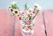 Bloemen om blij van te worden