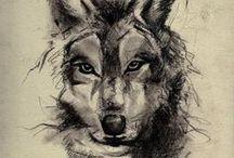 Animal drawings / animal drawings