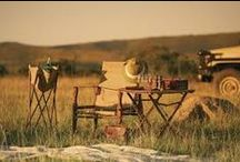 Safari Style / Images that inspire a Rustic world of adventure