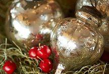 Seasonal: Christmas & Winter / by cihendricks