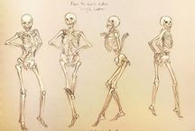 Character Anatomy - Bones / Character Design Reference (뼈)