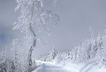 Zima / Winter / Krásne fotografie, ktoré stoja za to...