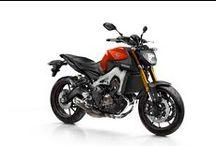 MT-09 / Yeni bir kompakt şasi ve yüksek torklu ve 3 silindirli bir motora sahip Yamaha MT-09 motosiklet, karakter ve ruhun önemini kavrayan sürücüler için tasarlanmıştır.