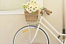Life is like a bicycle... In order to keep your balance you must keep moving / Bikes