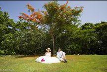 GRAND VELAS - Photo Session / Weddings in the Riviera Maya. Photo shoot newlyweds or/& engaged couples. Location: Grand Velas Hotel リビエラ マヤ ウエディング ビーチ フォト セッション 撮影場所:グランベラス  www.akidemi.com