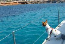 Nuestras favoritas | Our favourites / Aquiler veleros y alquiler Catamaranes en Ibiza y Formentera. www.papilloncharter.com